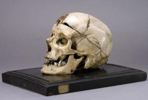 Cranio del brigante Villella