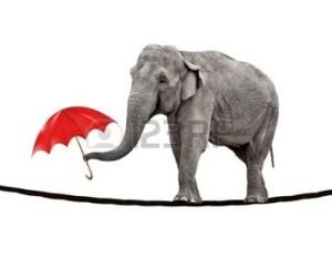Elefante in bilico