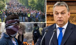 Ungheria referendum del 2 ottobre 2016